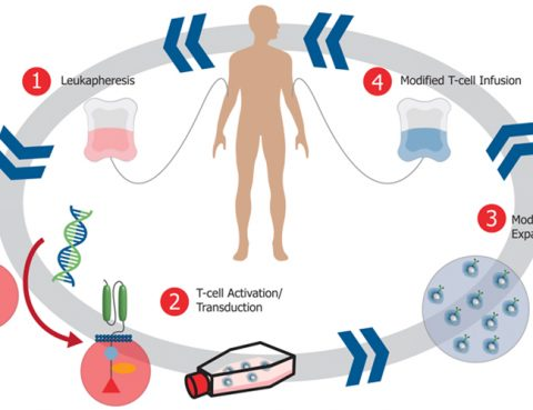 NK Cell Therapy in Thailand