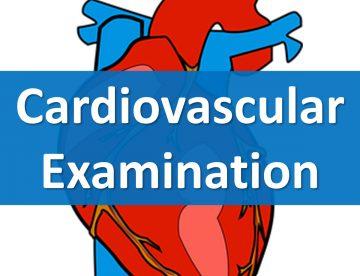 Cardiovascular Examination in Thailand