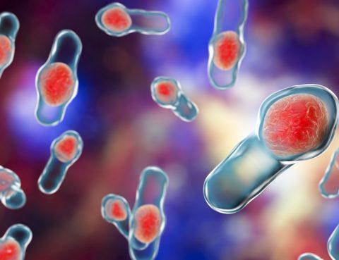 Clostridium Difficile Treatment in Thailand