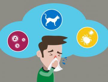 Best Allergies Treatment in Thailand