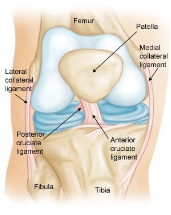 Ligament Injury Treatment in Thailand